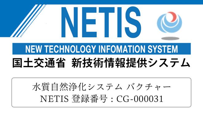NETIS バクチャー 登録
